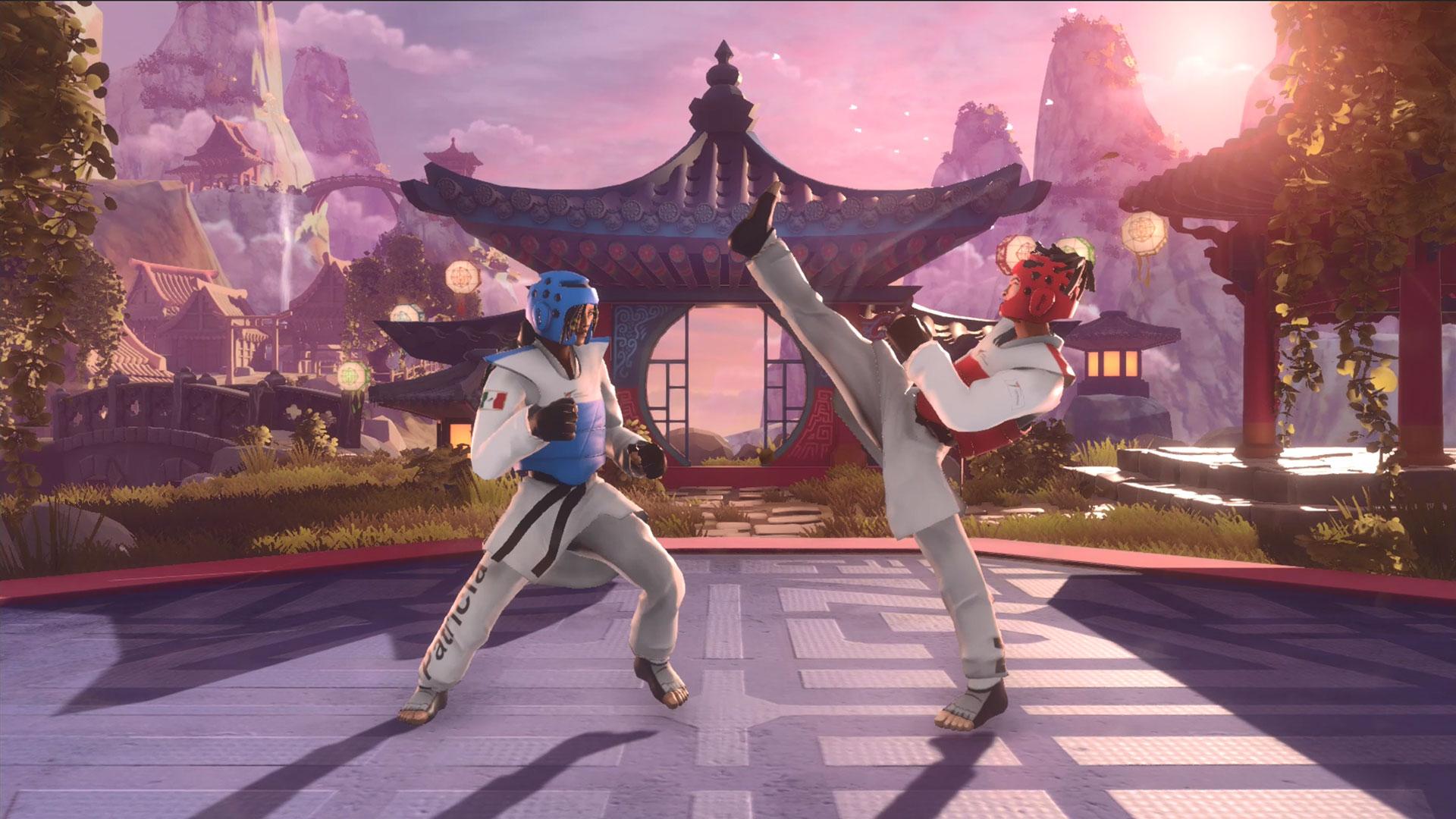 Studio IPs: Taekwondo